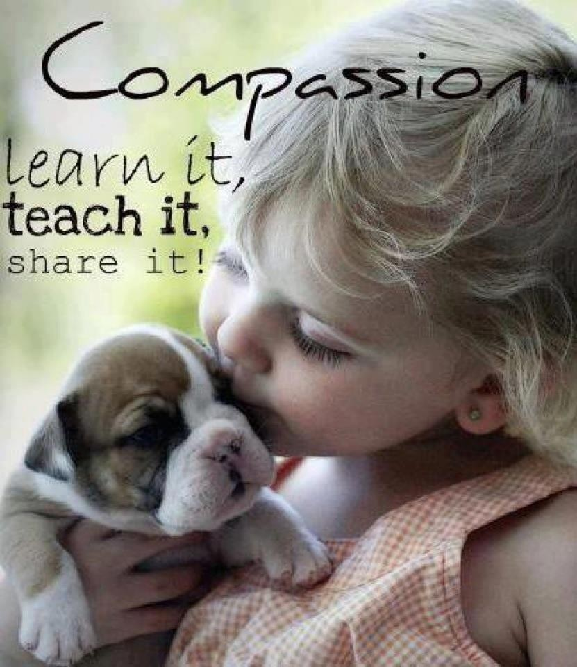 COMPASSION – Learning to Be a Compassionate Friend